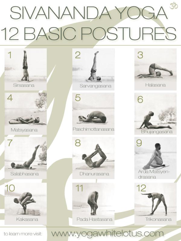 12-basic-postures2
