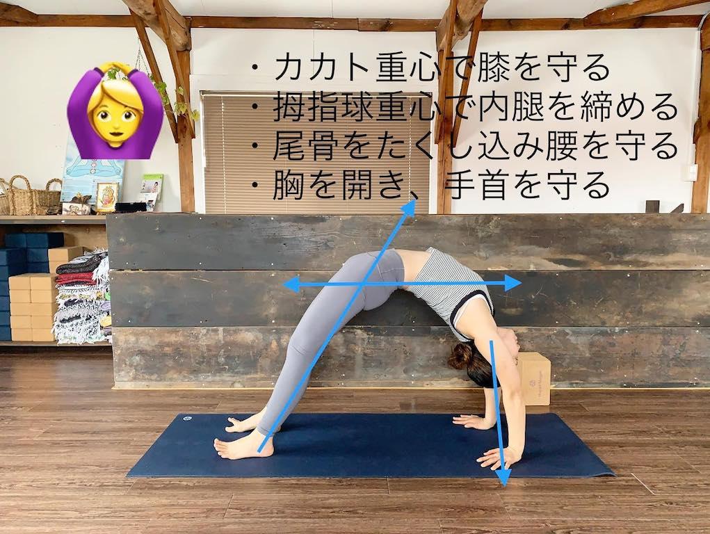 ヨガスタジオヨガシャーニーアライメント上向きの弓のポーズ安全な練習法